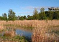 Betteshanger country park